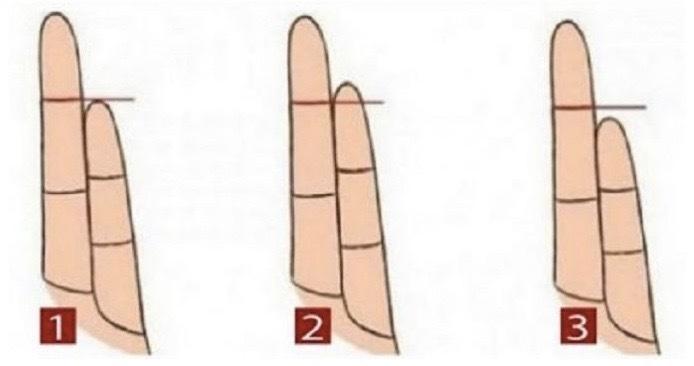 Formen på dina fingrar kan säga mycket om vilken hälsorisk du har!