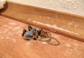 Kort efter att han dödat spindeln händer det oförklarliga – Vad är detta egentligen