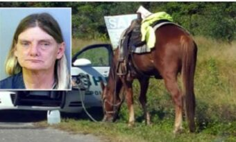 Polisen tyckte att kvinnan på hästen agerade konstigt. Vad de upptäckte när de stannade henne chockar ALLA!