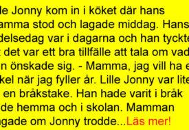 Lille Jonny kom in i köket där hans mamma…