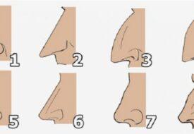 Visste du att formen på din näsa säger mycket om din personlighet?!