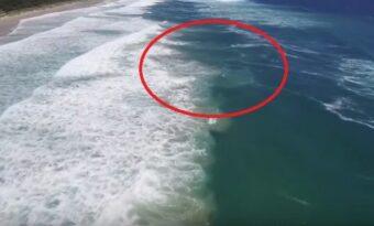 Drönaren flög över havet. När den hittar vad den söker så gör den något OTROLIGT!