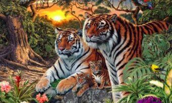 Det finns fler än fyra tigrar på bilden – hur många kan du hitta?