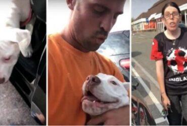 Mannen räddar hunden ifrån den jättevarma bilen. Men se den HEMSKA ägarens reaktion!
